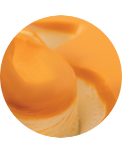 PINOPINGUINO ORANGE